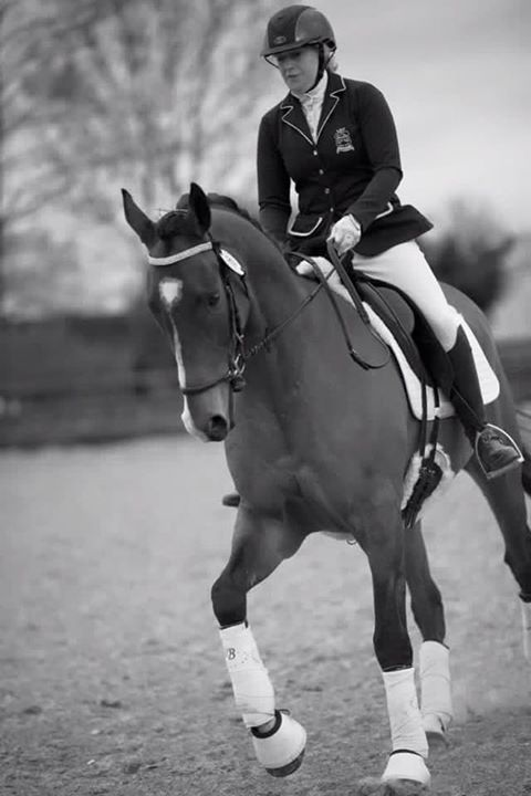 Bywell Beau Dressage Success thanks to Bespoke.