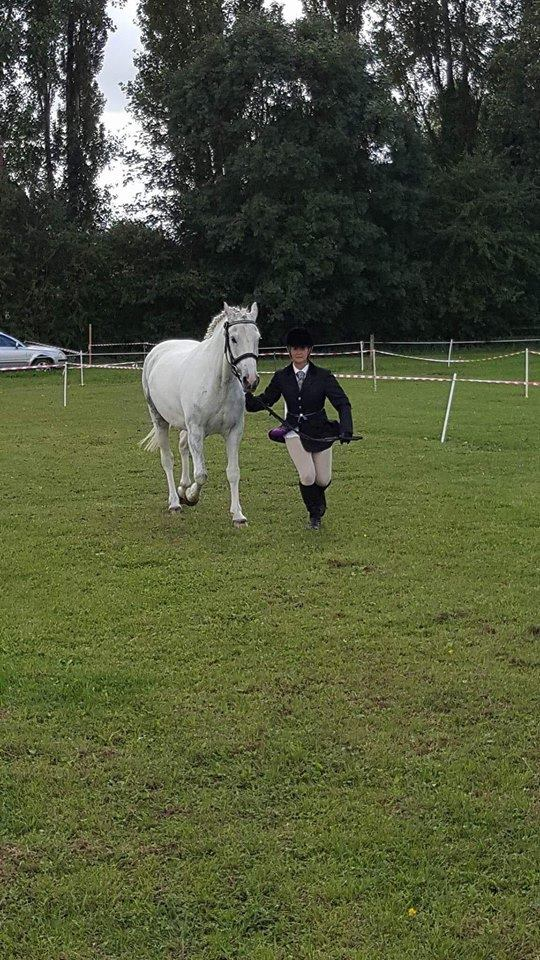 Little P Going Out and Winning Rosettes
