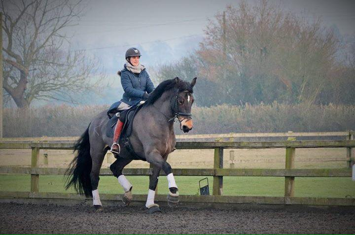 Elli Darling trains and rides horses on Hack Up Bespoke!