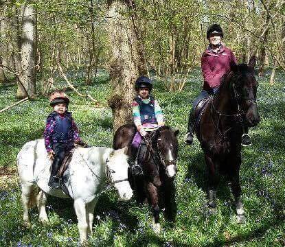 Calm Enough To Go On Easter Egg Hunt With The Children\'s Ponies Thanks To Bespoke