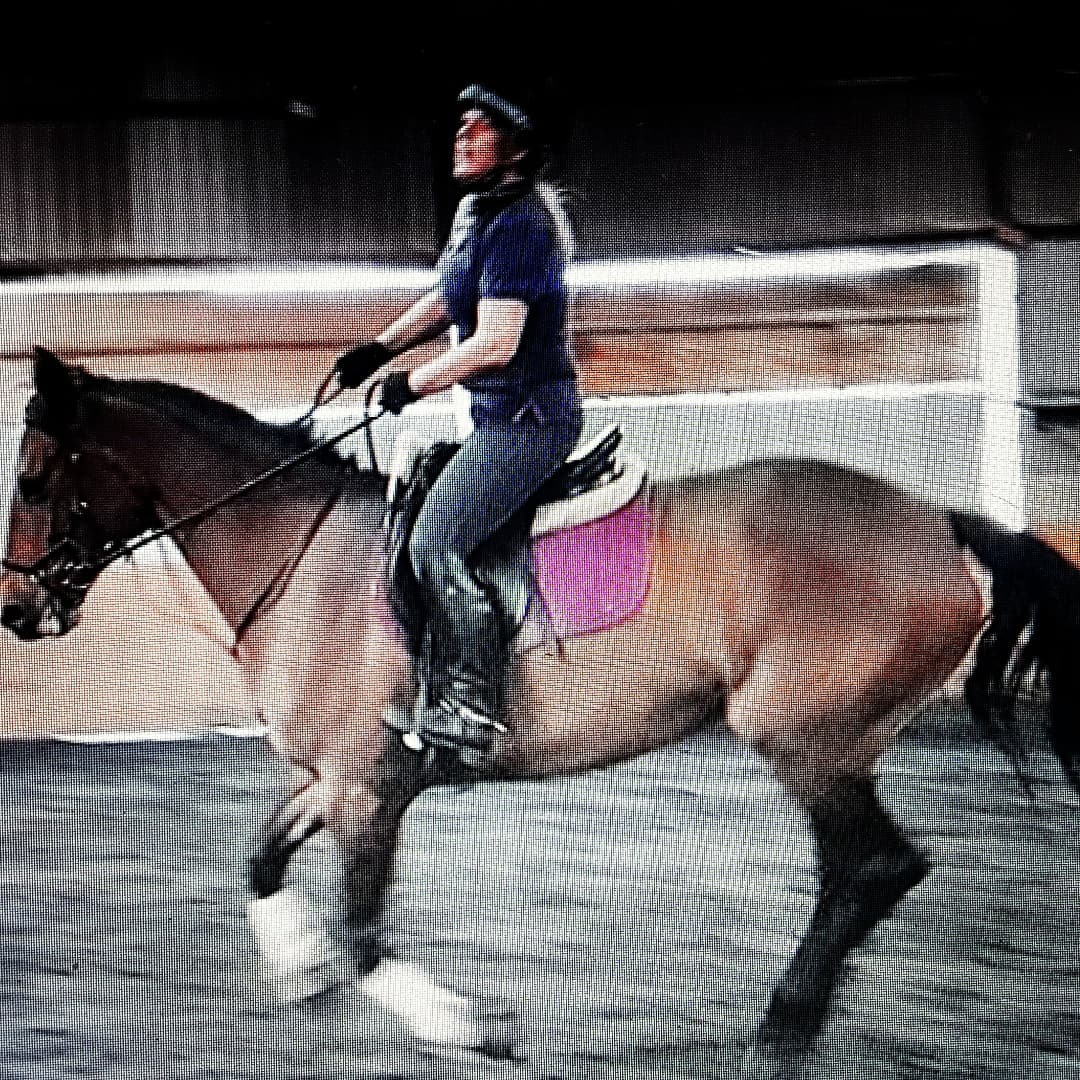 2 Years on Hack Up Calm / Digest / Detox Bespoke - Happy horse, Happy Owner