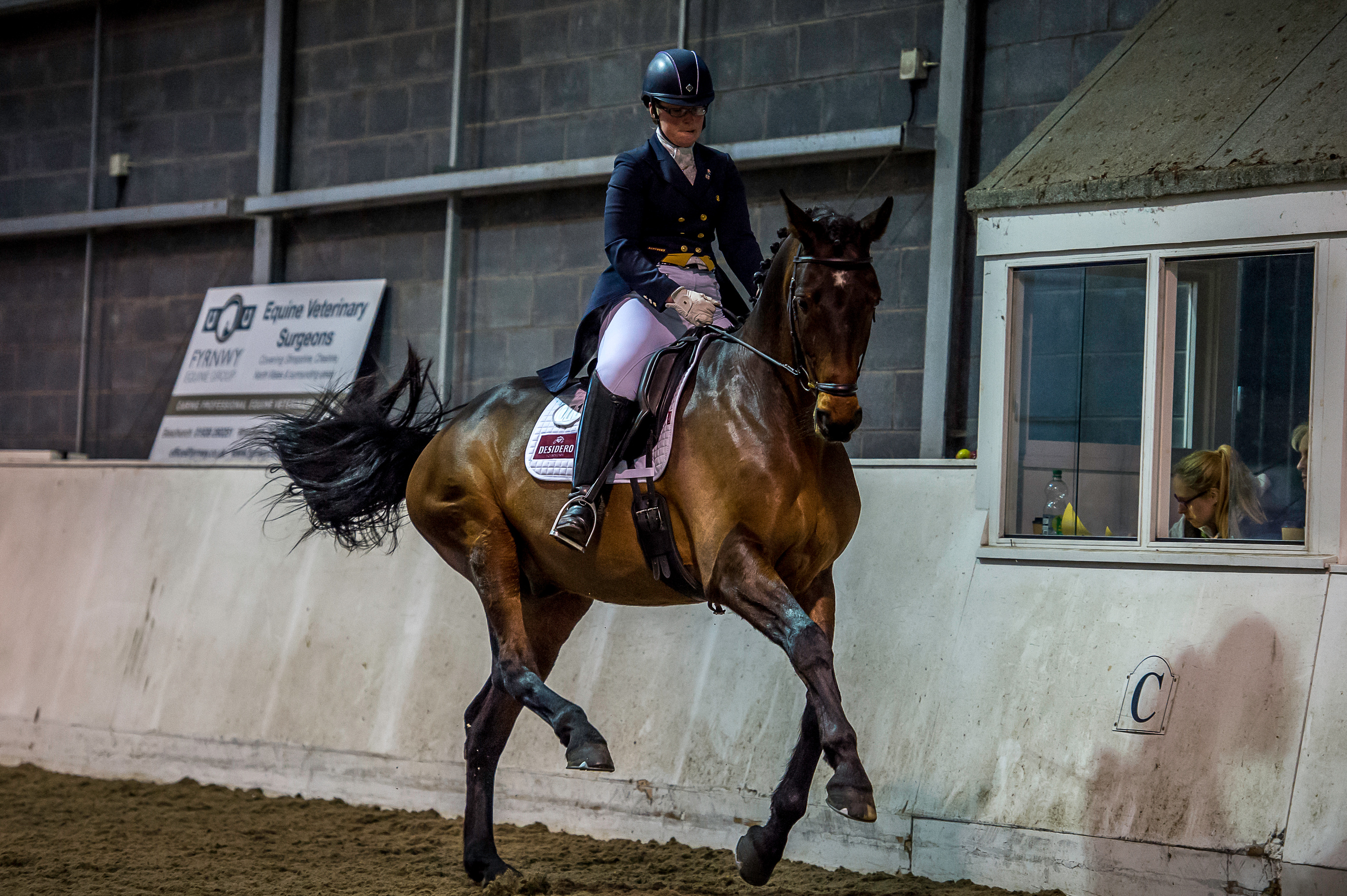 Charlotte Thomas - International Dressage Rider