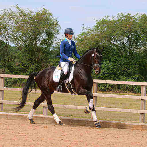 Emma Woolley International Dressage Rider and Trainer