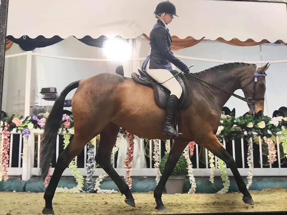 Lisa Rhodes' Rosie Been on Hack Up 4 Years