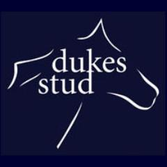 Charlie Wyatt, owner of Dukes Stud, Newmarket safeguards his staff saftey .