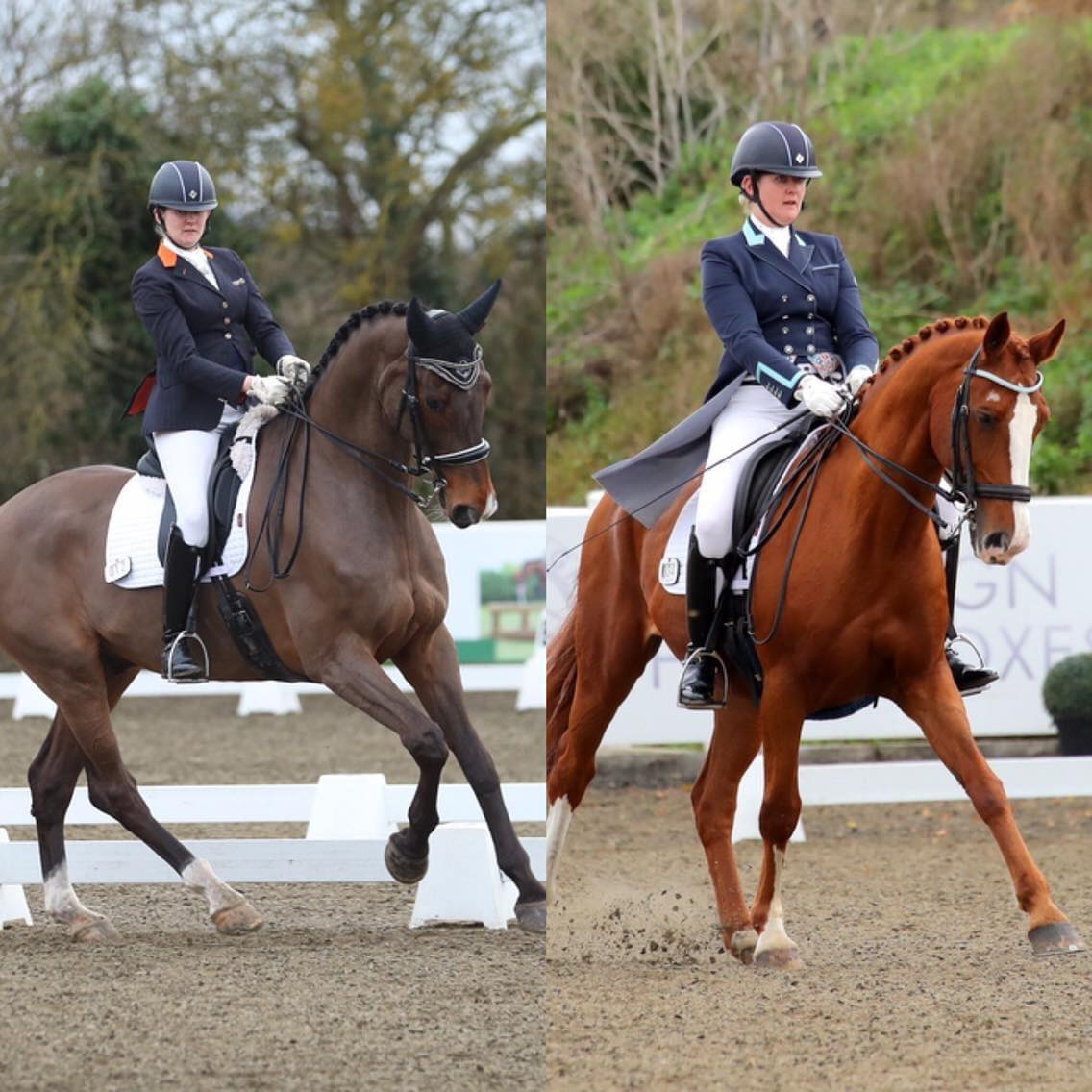 Katy Applin signs both of her dancing dressage horses up on subscription.