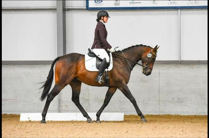 Dressage judge and trainer Gemma Pye will never run out again!!