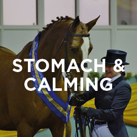 Equine calming supplement