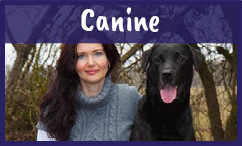 Canine supplement formulation